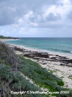 Guana Cay Weather, Tides, Climate, Water Temperature, Abaco, Bahamas